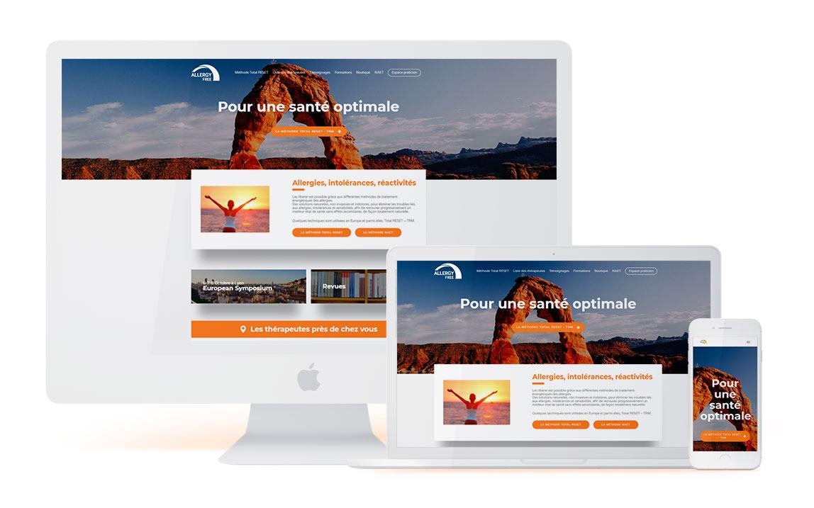 responsive allergyfree wordpress agence web lyon arkanite design graphisme ecommerce commerce boutique en ligne illustrations logos meilleure
